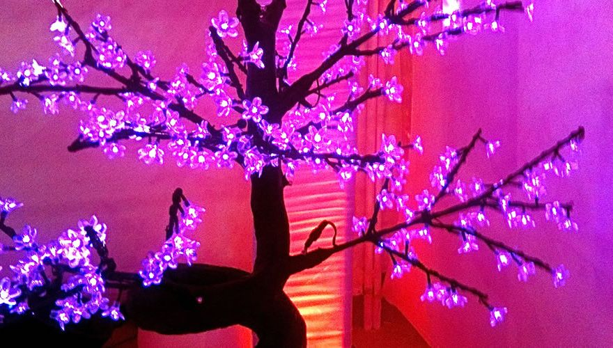 bonsai-led-lumineux-rose