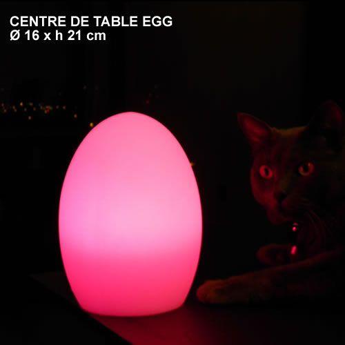 Centre-de-table-autonome-EGG
