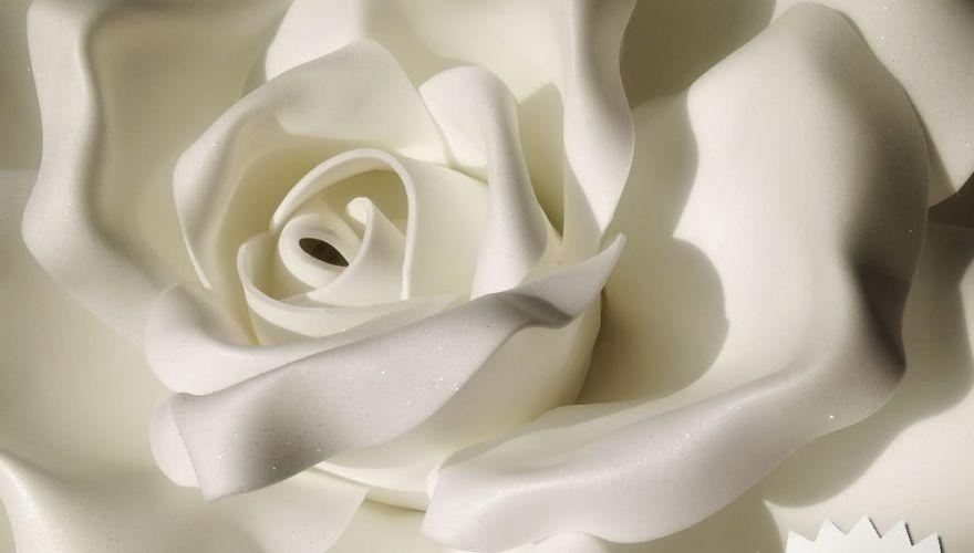 rose-lumineuse-paillete
