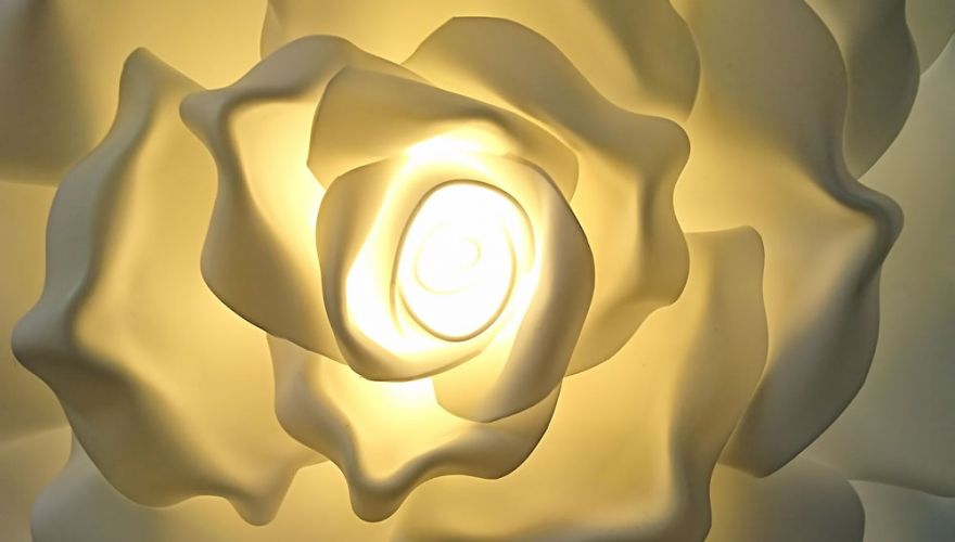 roses-lumineuses-blanc